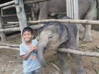 Elephant Care - without trekking (+ Rafting + Waterfall)